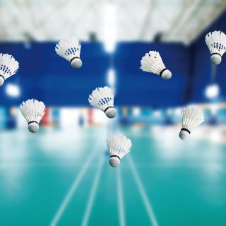 Badminton Court - Obrázkek zdarma pro iPad mini 2