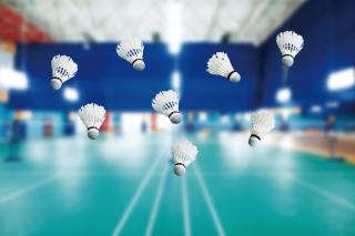 Badminton Court - Obrázkek zdarma pro 1680x1050
