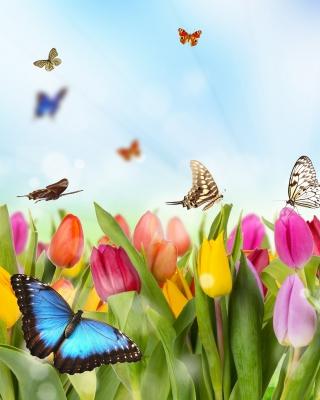 Butterflies and Tulip Field - Obrázkek zdarma pro Nokia C2-02