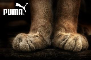 Puma Fluffy Logo - Obrázkek zdarma pro Google Nexus 5