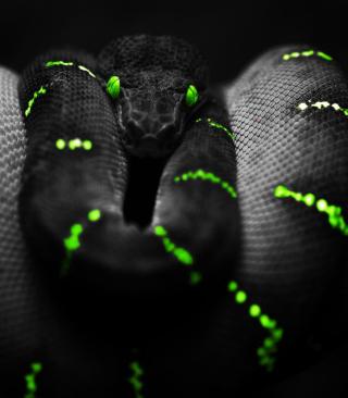 Black Mamba Snake - Obrázkek zdarma pro Nokia X1-00