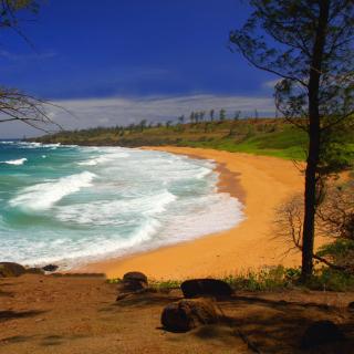 Donkey Beach on Hawaii - Obrázkek zdarma pro iPad 2
