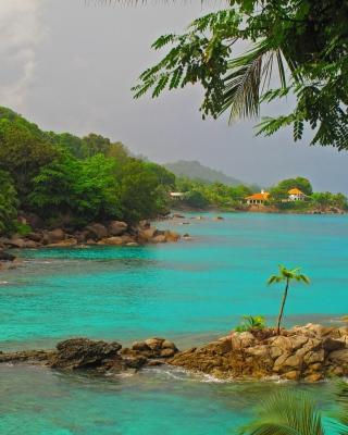 Baga Beach in North Goa - Obrázkek zdarma pro 360x400