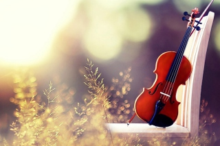 Violin Wallpaper for Android, iPhone and iPad