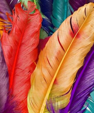 Colored Feathers - Obrázkek zdarma pro Nokia X7