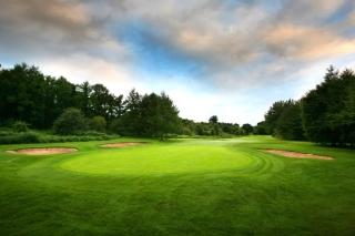 Golf Course - Obrázkek zdarma pro LG Optimus M