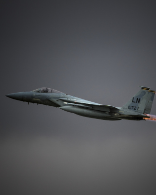 McDonnell Douglas F-15 Eagle Fighter Aircraft - Obrázkek zdarma pro 750x1334