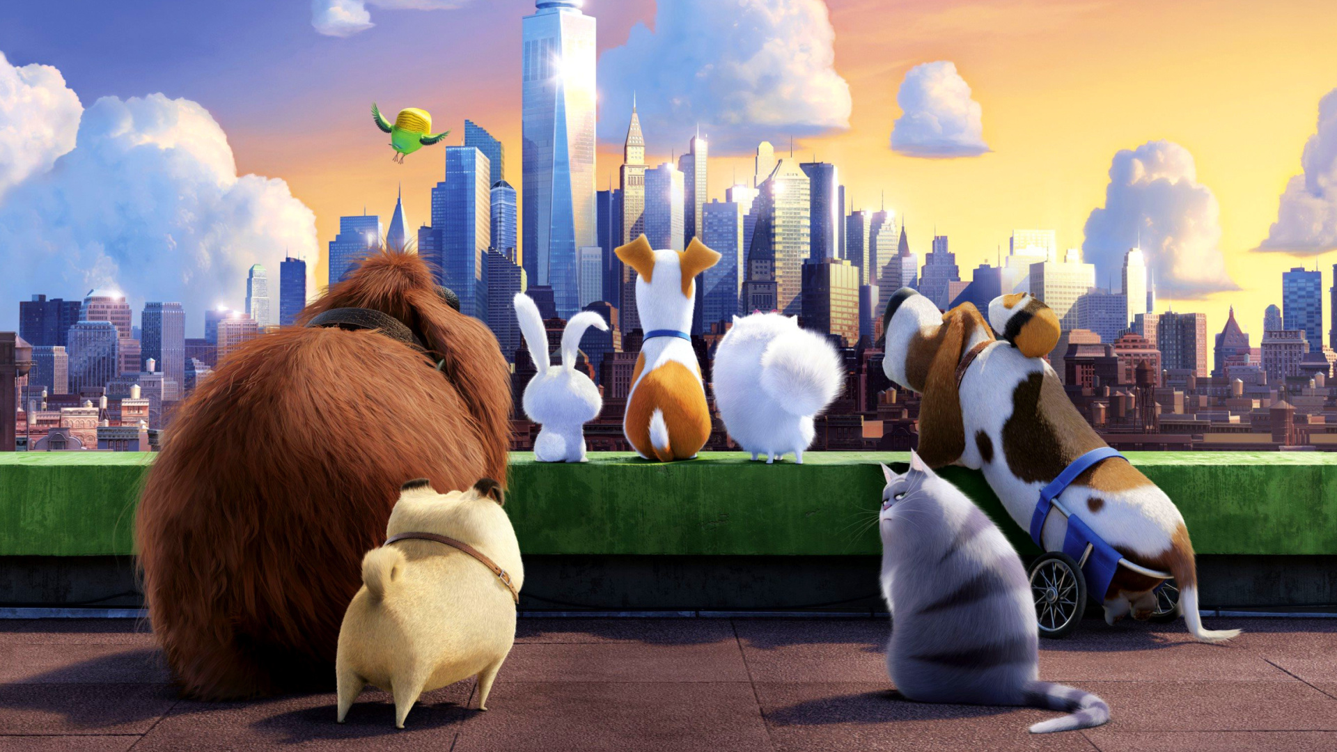 The Secret Life Of Pets Wallpaper: The Secret Life Of Pets Gang Wallpaper For 1920x1080