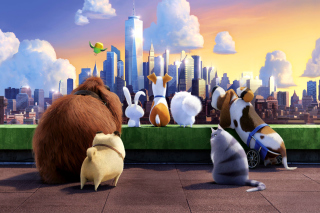 The Secret Life of Pets Gang Background for Android, iPhone and iPad