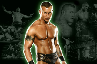 Randy Orton - Obrázkek zdarma pro Sony Xperia Tablet Z