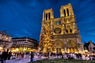 Free Notre Dame Cathedral Picture for Android, iPhone and iPad