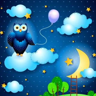 Night Owl - Obrázkek zdarma pro 320x320