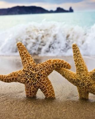 Sea Stars Dance - Obrázkek zdarma pro Nokia Asha 300