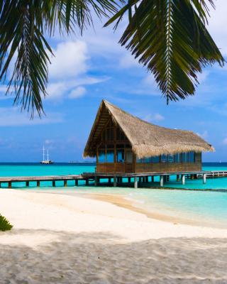 Bahamas Grand Lucayan Resort - Obrázkek zdarma pro Nokia C1-01