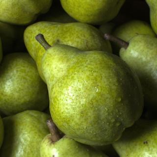 Fruit Pear - Obrázkek zdarma pro iPad 3
