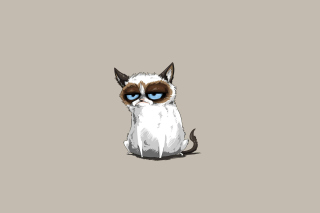 Free Grumpy Cat Drawing Picture for Android, iPhone and iPad