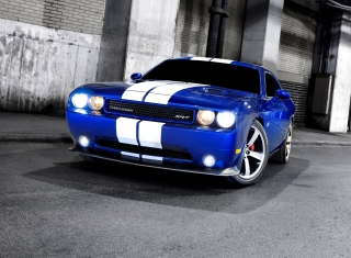 Free Dodge Challenger SRT Picture for Android, iPhone and iPad