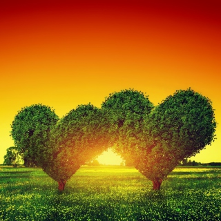 Heart Green Tree - Obrázkek zdarma pro iPad 2