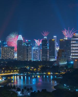 Singapore Fireworks - Obrázkek zdarma pro 128x160