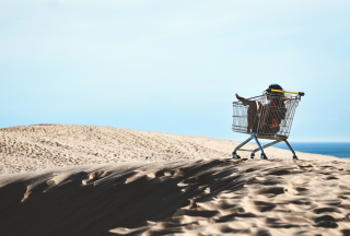 Girl In Shopping Cart Wallpaper for Android, iPhone and iPad