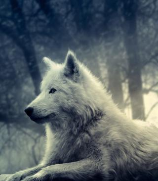 Night Wolf - Obrázkek zdarma pro 768x1280