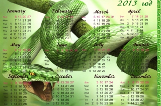 Snake Year - Obrázkek zdarma pro 1600x900