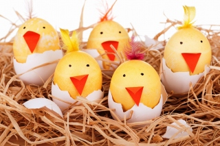 Smile Easter Eggs Wallpaper for Android, iPhone and iPad