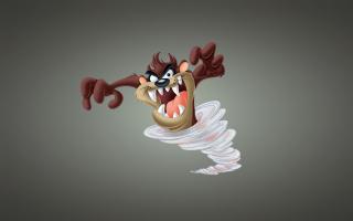 Looney Tunes Tasmanian Devil - Obrázkek zdarma pro Fullscreen Desktop 1600x1200