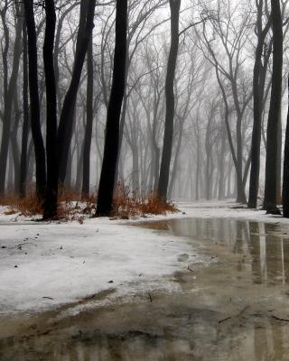 Winter is Coming - Obrázkek zdarma pro 128x160