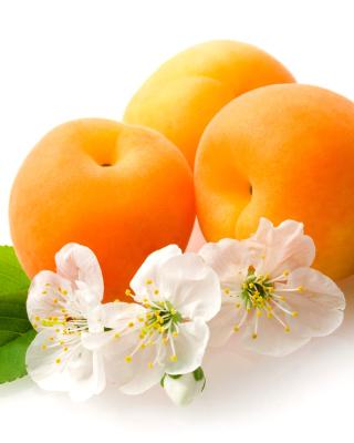 Apricot Fruit - Obrázkek zdarma pro Nokia Lumia 625