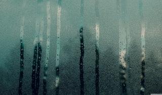 Steamy Window - Obrázkek zdarma pro Widescreen Desktop PC 1280x800