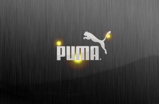 Puma - Obrázkek zdarma pro Google Nexus 5