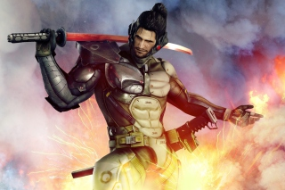 Free Metal Gear Rising Revengeance Picture for Android, iPhone and iPad