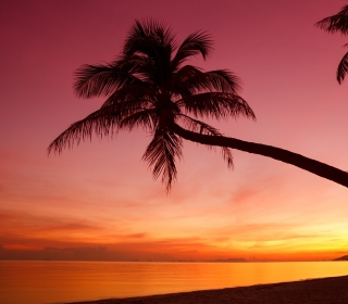 Crimson Sunset - Obrázkek zdarma pro iPad 2