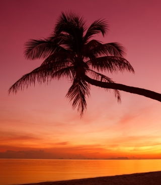 Crimson Sunset - Obrázkek zdarma pro Nokia X1-01