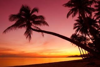 Crimson Sunset - Obrázkek zdarma pro HTC One