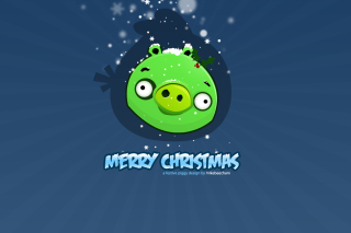 Green Piggi Merry Chirstmas Wallpaper for Android, iPhone and iPad