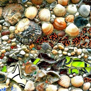 Shells and Pebbles - Obrázkek zdarma pro iPad
