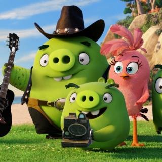 The Angry Birds Movie Pigs - Obrázkek zdarma pro 208x208