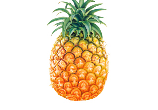 Pineapple Picture for Android, iPhone and iPad