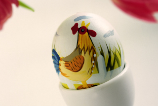 Easter Egg With A Beautiful Motif Picture for Android, iPhone and iPad