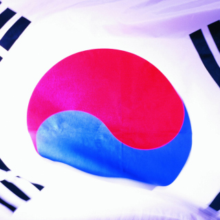 South Korea Flag - Obrázkek zdarma pro 320x320