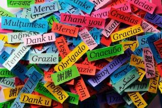 Pieces of Paper with Phrase Thank You sfondi gratuiti per cellulari Android, iPhone, iPad e desktop