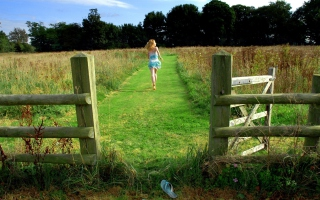 Run Away To Fields Wallpaper for Android, iPhone and iPad