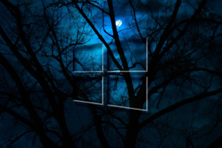 Windows 10 HD Moon Night - Obrázkek zdarma