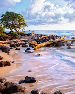 Sea shore and sky - Obrázkek zdarma pro Nokia Lumia 810