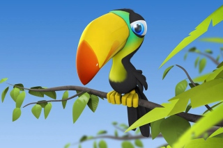 Colorful Parrot Picture for Nokia XL