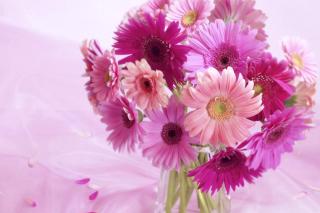 Gerbera Bouquet Idea - Obrázkek zdarma pro Android 1200x1024