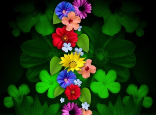 Flowers Picture for Android, iPhone and iPad
