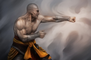 Warrior Monk by Lucas Torquato de Resende - Obrázkek zdarma pro Samsung Galaxy Ace 4